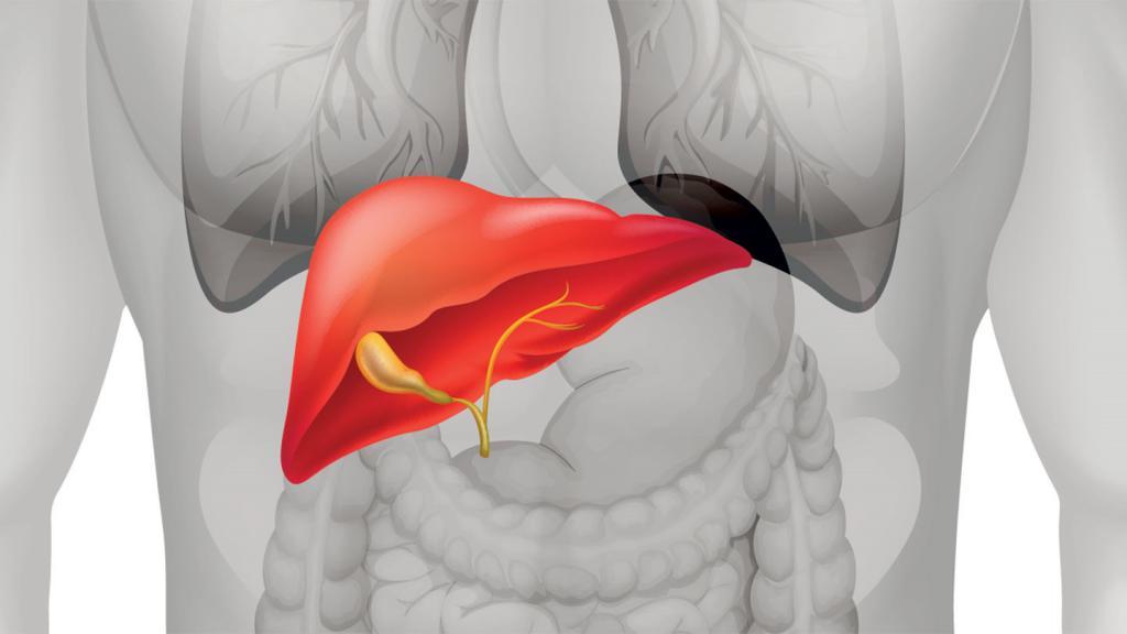 низкий гемоглобин и высокие тромбоциты у взрослого