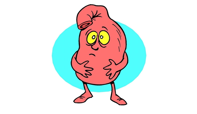 как вылечить расстройство желудка в домашних условиях