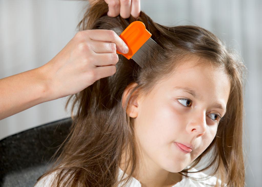 корочки на голове у ребенка 5 лет