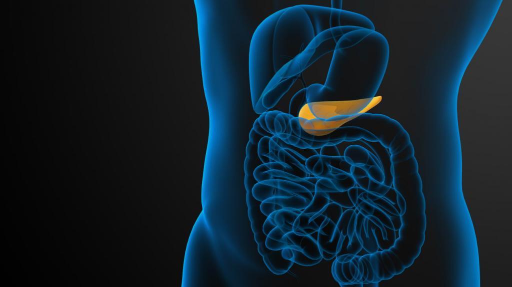 Квашеная капуста при панкреатите