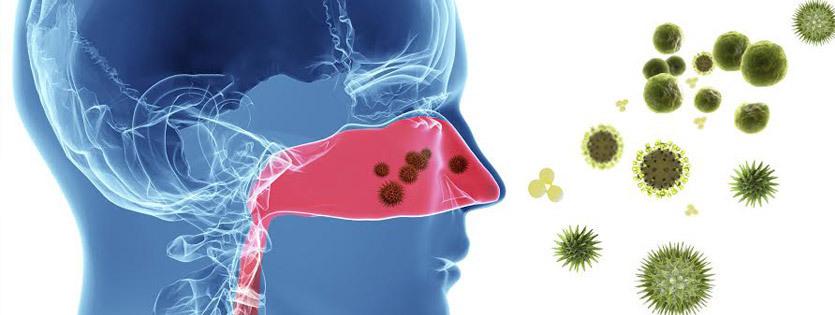 Действие аллергенов на слизистую носа