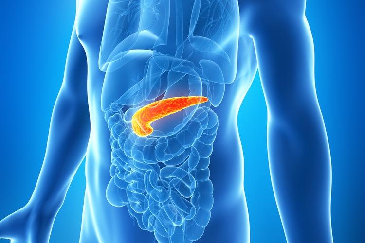 Препараты при внешнесекреторной недостаточности поджелудочной железы thumbnail