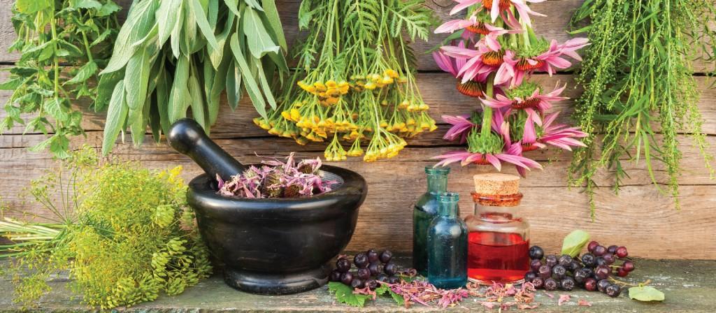 Методы лечения простуды народными средствами