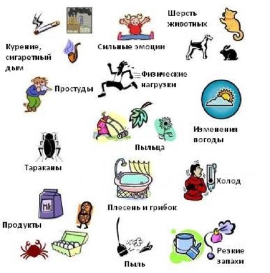 Триггеры или причины астмы