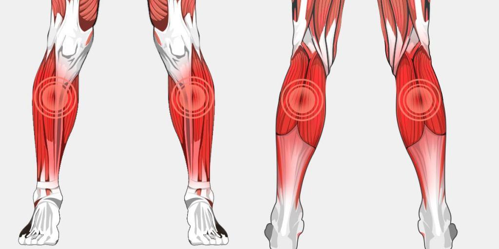 судорога икроножной мышце ночью