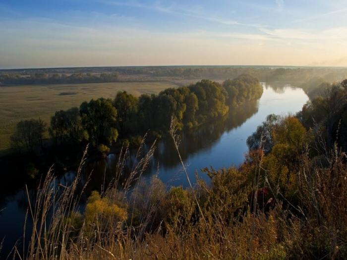 описание реки брянской области