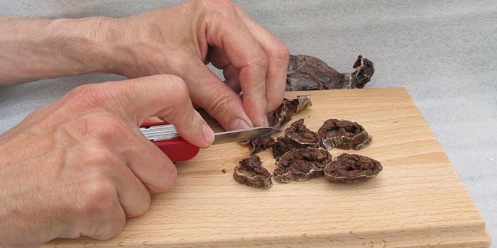 лечебные свойства струи бобра