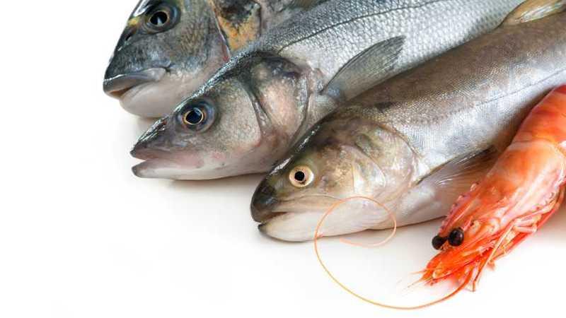 рыба и креветка