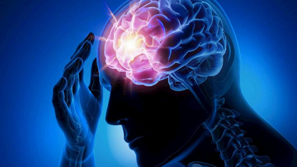 Очаг возбуждения в головном мозге
