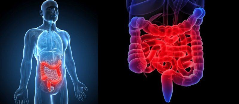 лекарство от воспаления кишечника дюспаталин