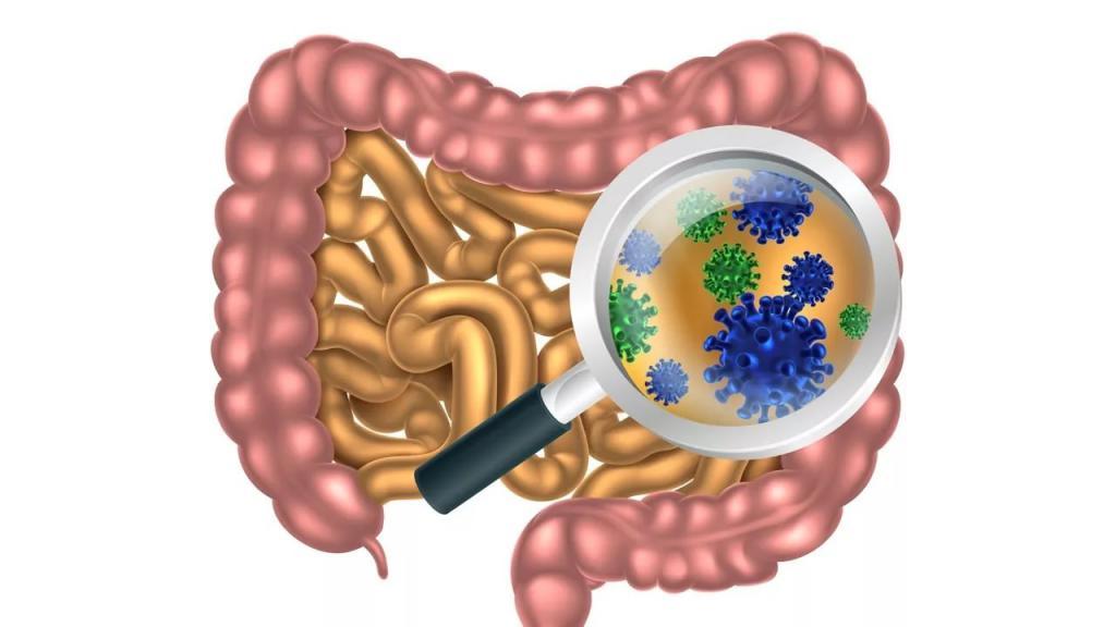Показание к приему – кишечные инфекции