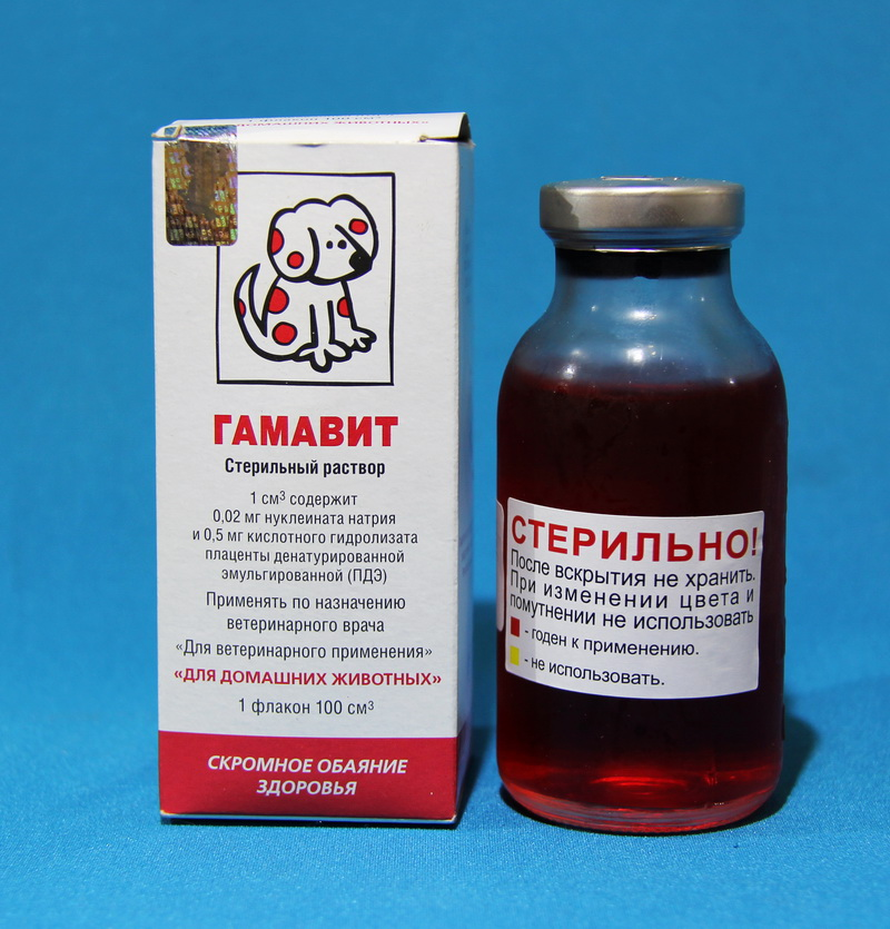 иммуномодуляторы для собак список препаратов