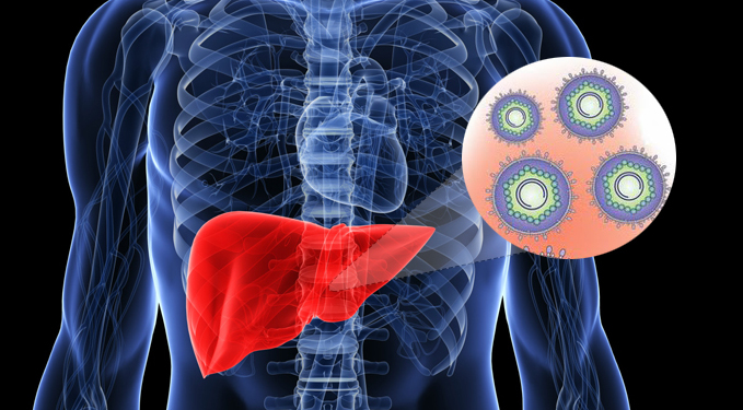 антитела к ядерному антигену гепатита в