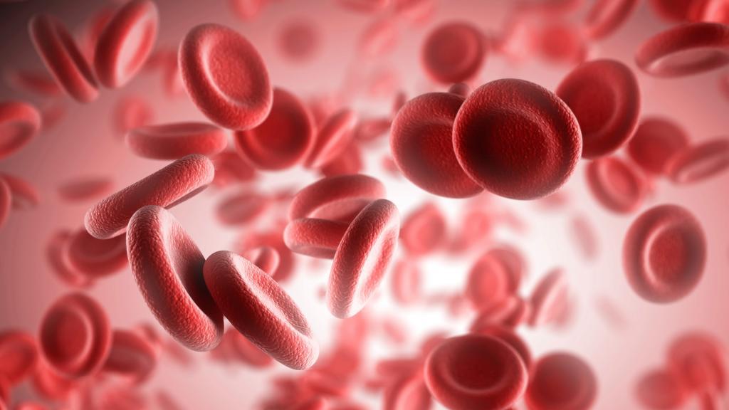 показатели развернутого анализа крови у детей