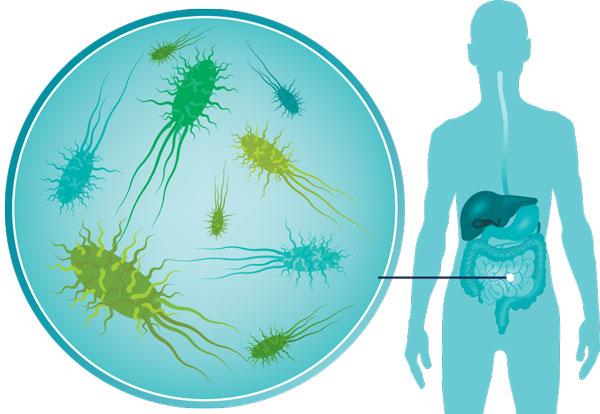 пиобактериофаг поливалентный очищенный микроген