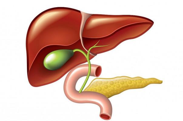 Влияние правильного питания при холецистите на организм