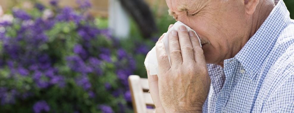 Аллергия у пожилых