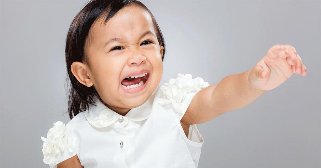 истерики у ребенка 4 лет советы психолога