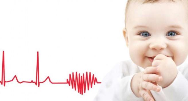 Относительные границы сердца ребенок 5 лет thumbnail