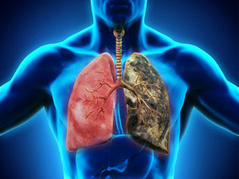 Исследование функций легких