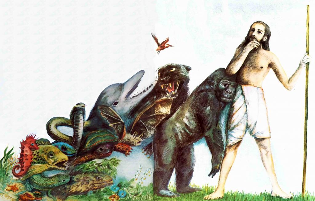 Эволюция видов