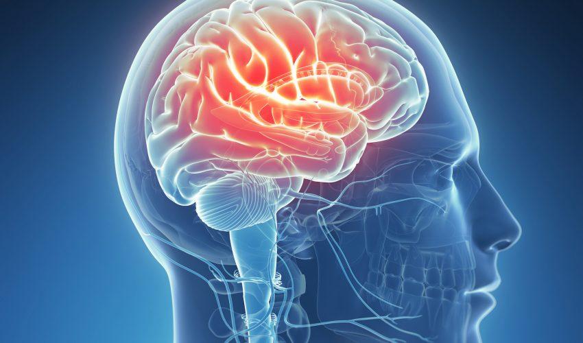 Проявление эпилепсии