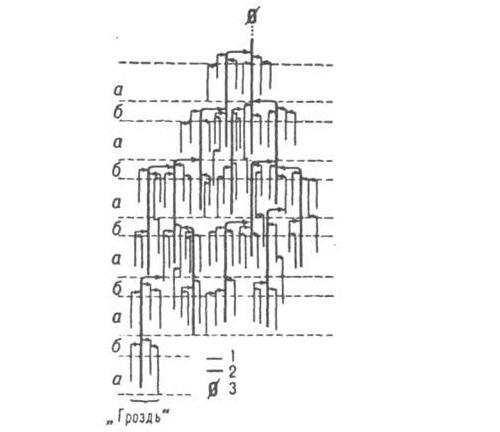 Структура амилопектина