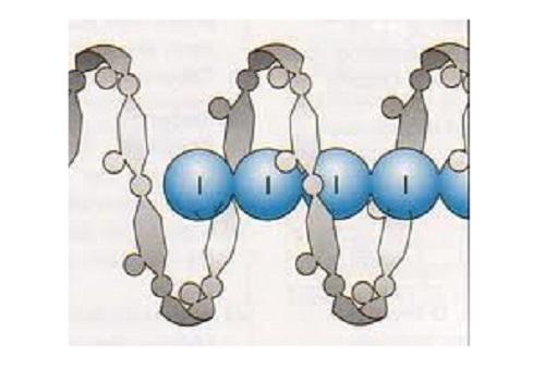 Соединение включения с йодом