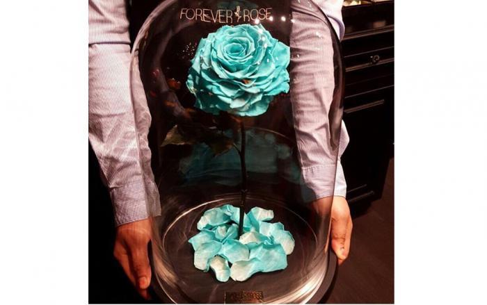 роза в колбе купить