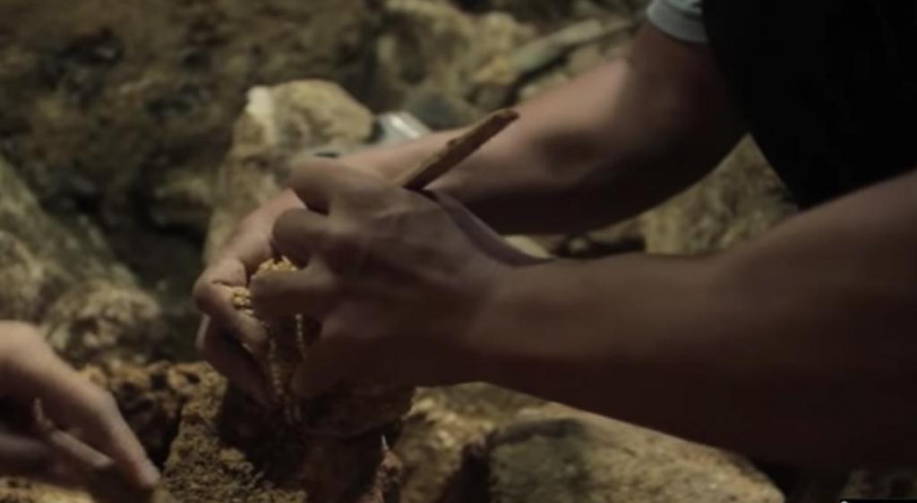 Неужели нашими предками были хоббиты: на Филиппинах были обнаружены останки древнего человека
