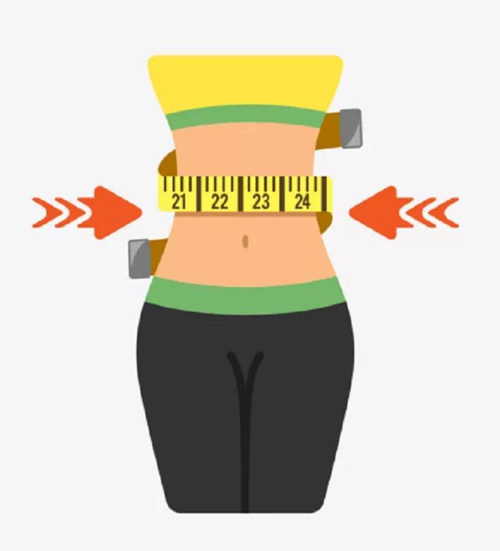 Исследование подтвердило, что размер талии напрямую зависит от кишечных бактерий