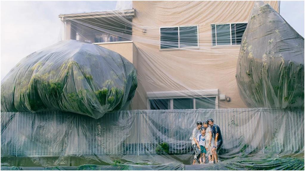 Весь мир будет единым целым: экстремальные фото людей и домов, плотно завернутых в тонкий слой пленки