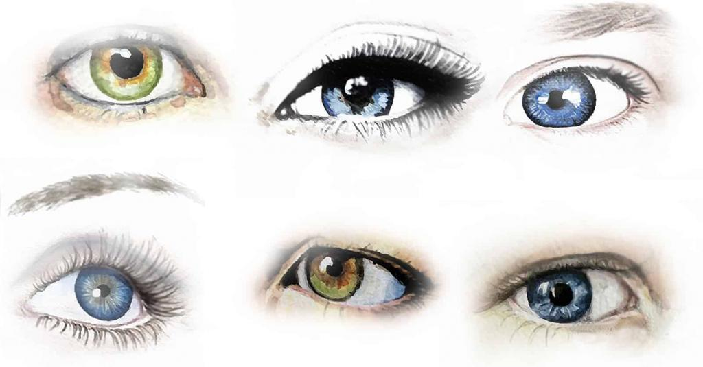 количество все виды глаз картинки вариант если декор