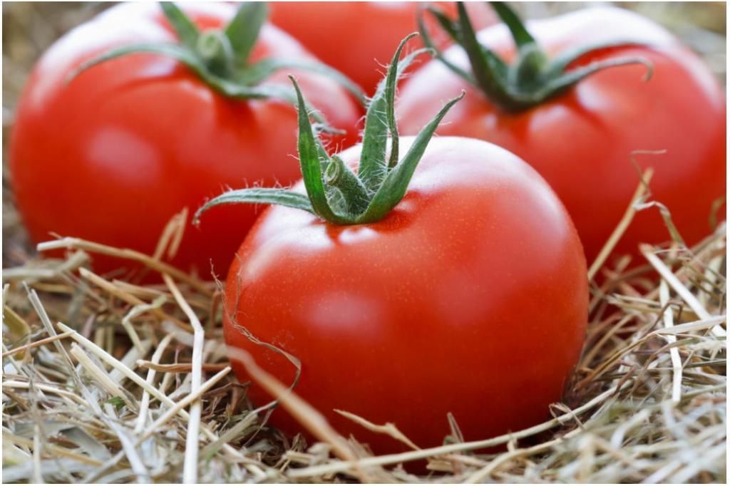 Как сохранить красные помидоры как можно дольше