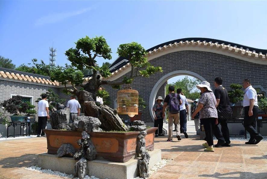 """Туристы удивлены """"экологическому прогрессу"""" Китая. Новые технологии борьбы с опустыниванием и биоразнообразие"""