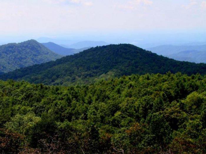 Гора Сассафрас