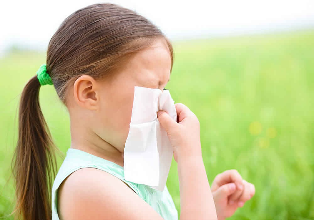 лекарство от аллергии на коже головы