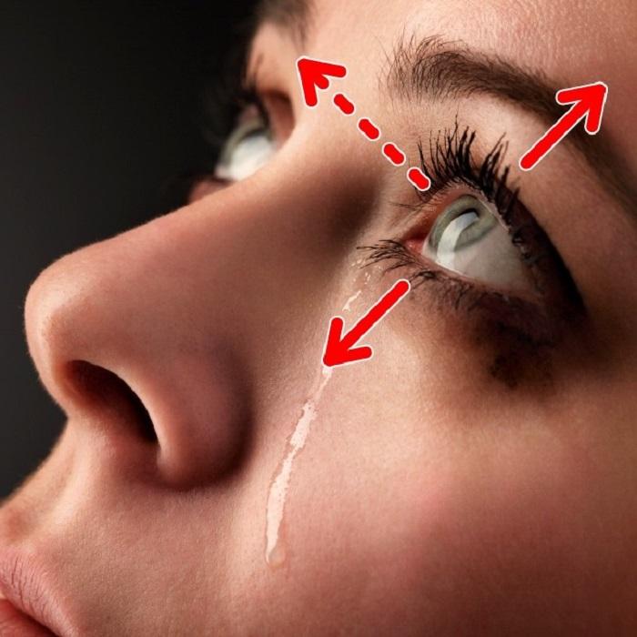 картинка чтобы заплакать безумно любит ухаживать