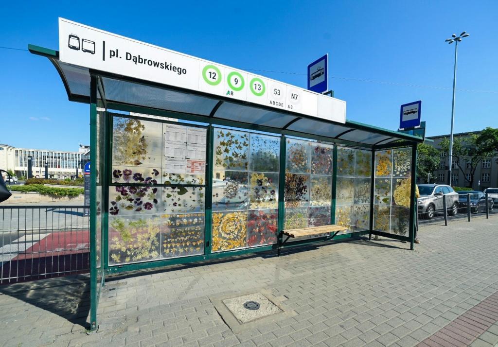 Трамвайная остановка в Польше превратилась в уникальную выставку гербария (фото)