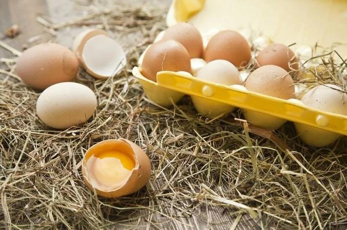 Ученые назвали 9 привычных продуктов, которые могут вызвать отравление: какую опасность таят куриные яйца