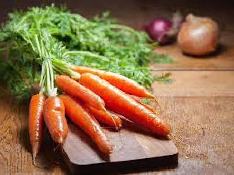 Гости высоко оценили мой рулет из скумбрии с овощной начинкой: делюсь пошаговым рецептом
