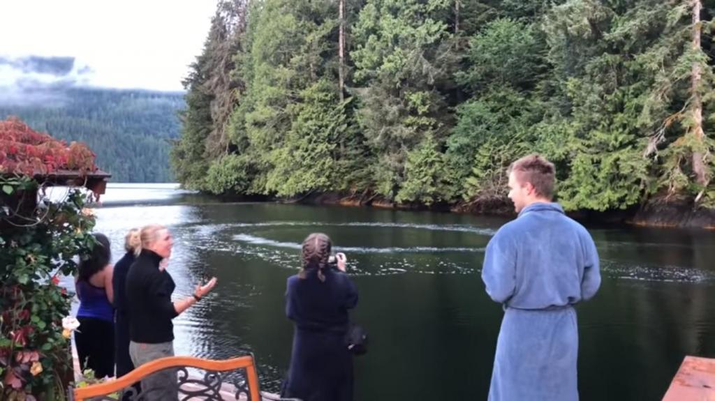 Постояльцы отеля заметили пузыри на воде: их завтраку решило помешать морское животное (видео)