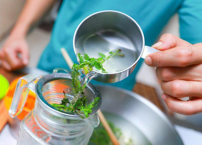Чай из мяты: 6 способов приготовления напитка