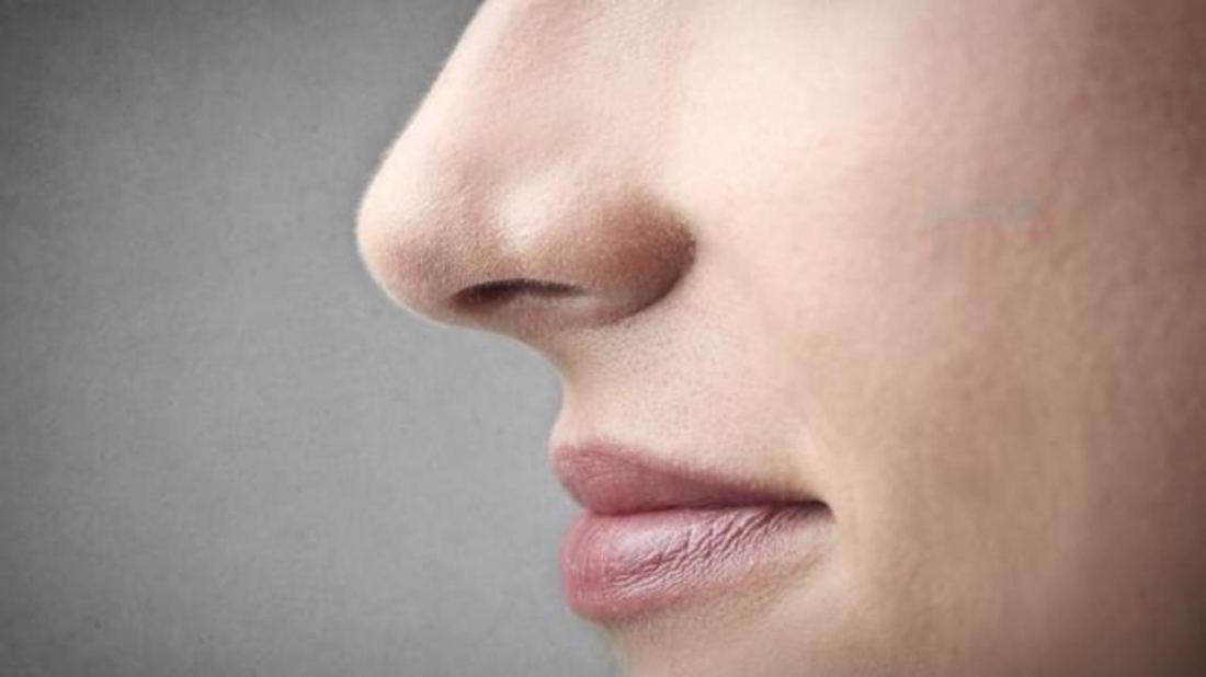 Секс отличия по форме носа