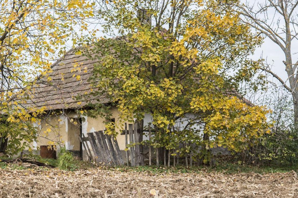 фото венгерской деревни что