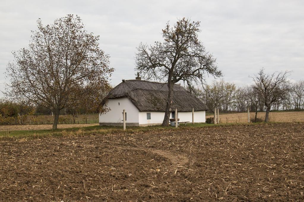 азиатка, фото венгерской деревни так как