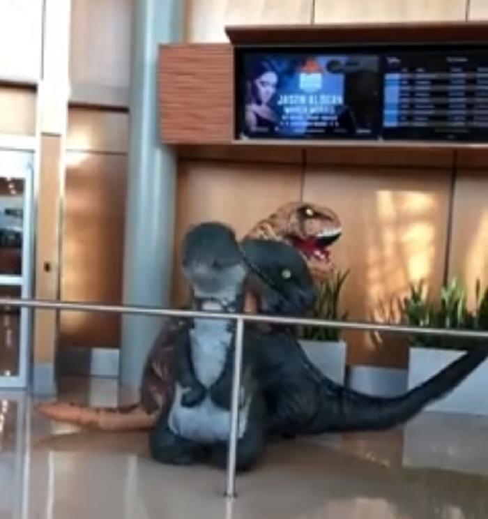 Внуки пытались удивить бабушку в аэропорту, нарядившись в костюмы динозавров, но она оказалась хитрее (видео)