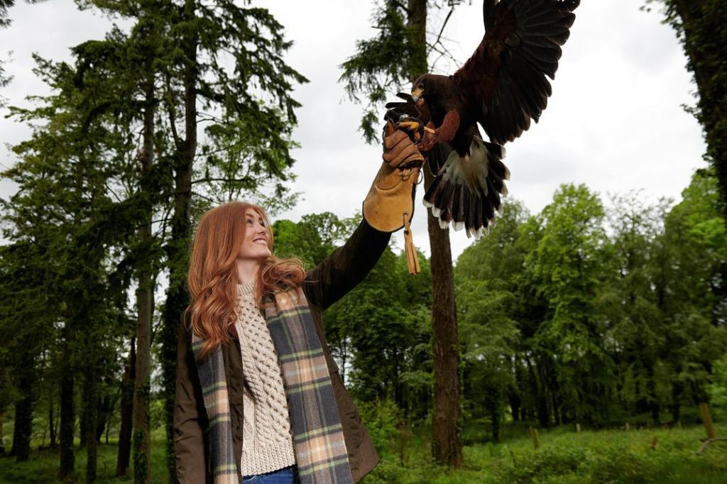 Знакомство со спортом королей: шесть мест по всему миру, где вы можете попробовать свои силы в соколиной охоте