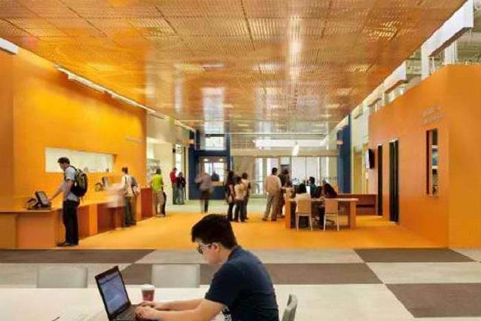 В американском городе появилась гениальная идея превратить заброшенный магазин в крупнейшую библиотеку: фото