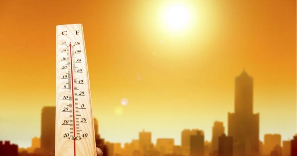 2019 год стал вторым самым жарким годом за последние 140 лет, завершив самое теплое десятилетие в истории